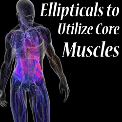 what muscles does the elliptical machine work